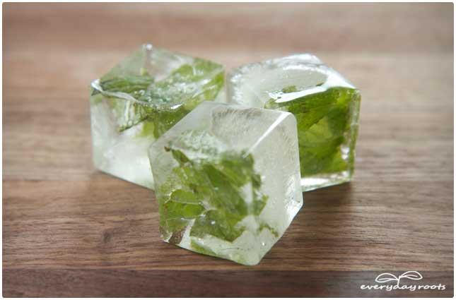 herb infused ice cubes
