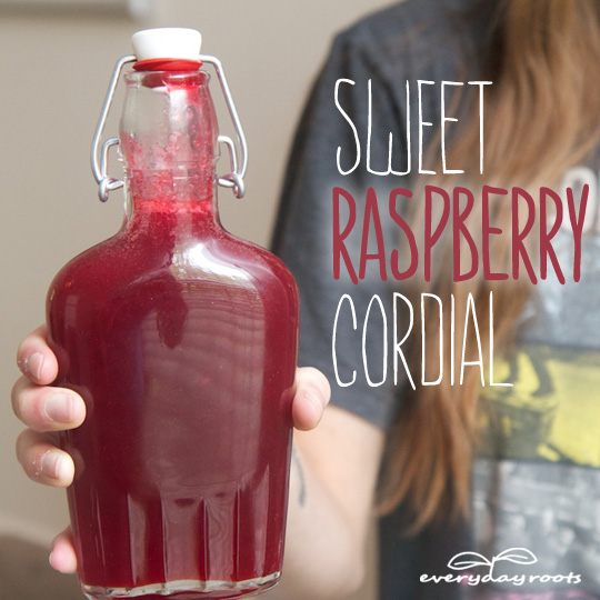 Sweet Raspberry Antioxidant Cordial- a delicious drink for the summer.