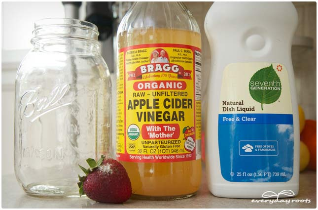 apple cider vinegar ingredients