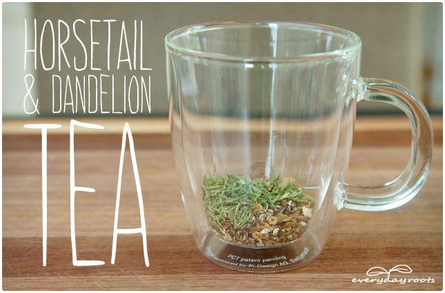 horsetail and dandelion uti tea
