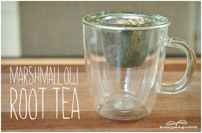 marshmallow root tea