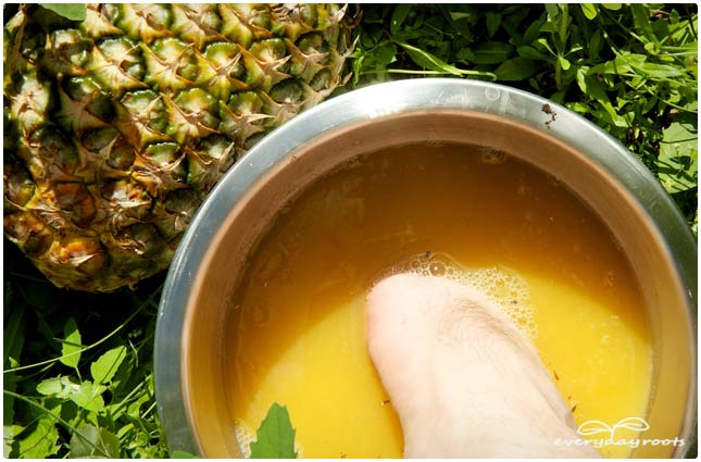 pineapple juice planters wart bath