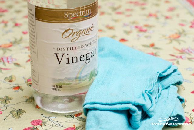 Vinegar Ant Remedy